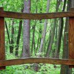 割れない鏡の枠に木目調メープルや木目調オークという色